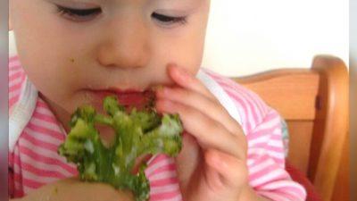 Introdução e desenvolvimento alimentar – Método BLW