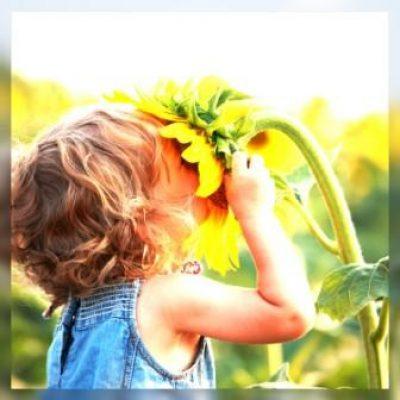 Integração sensorial e autismo